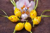Velikonoční jarní sada